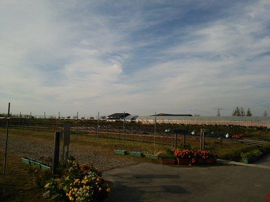 Niigata City Agricultural Park