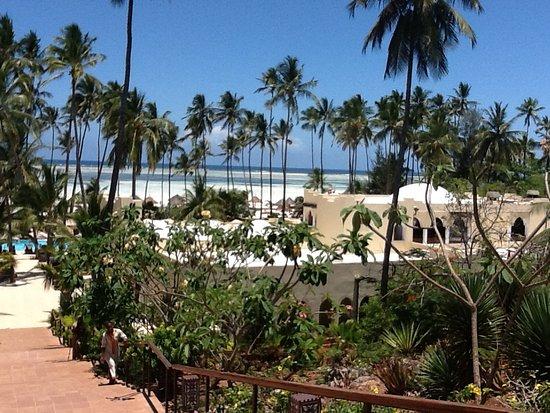 Dream of Zanzibar Image