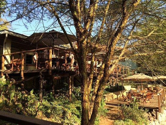 Wildebeest Eco Camp: photo4.jpg