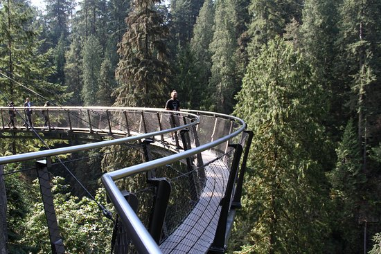 Vancouver Nord, Canada: Capilano Suspension Bridge Cliffwalk