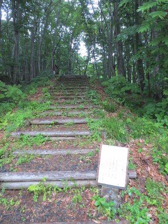 Fujisato-machi, Japan: 山道足場