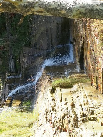 Finger Lakes Waterfall Resort: Part of nearby Hector Falls.
