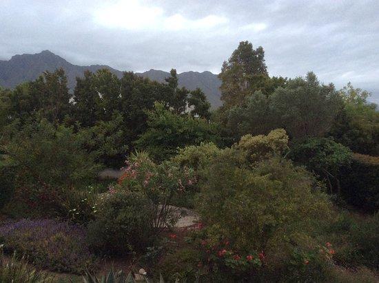 إمبانجيلي: Garden view