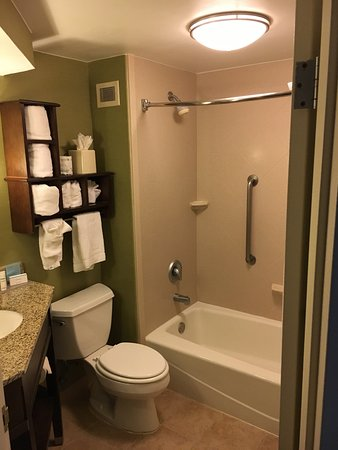 Hampton Inn Kansas City Airport: photo4.jpg
