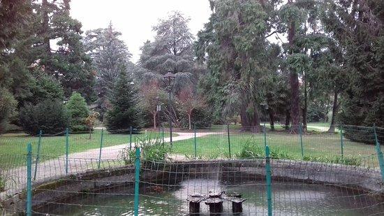Baveno, Italia: 20161101_164606_large.jpg