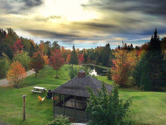 Petite-Riviere-Saint-Francois, Καναδάς: Vu de la chambre tintin