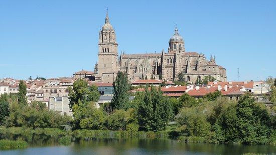 imagen Delicious salamanca en Salamanca