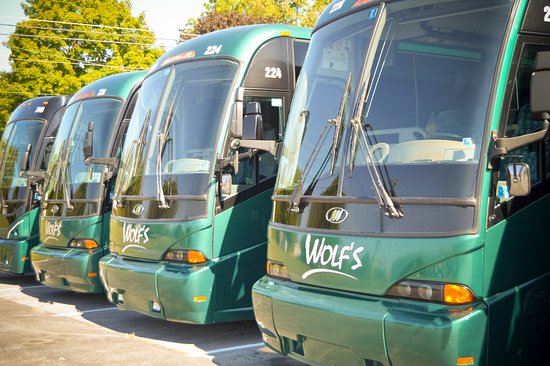 Wolf Bus Tours York Springs