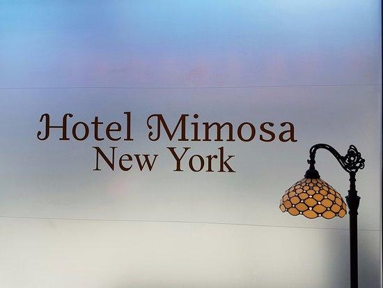 Zdjęcie Hotel Mimosa