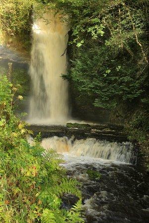 Leitrim, Ιρλανδία: Waterfall and run off.