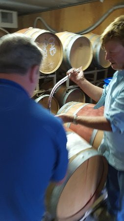 Castro Valley, CA: Getting a pour straight from the barrel.