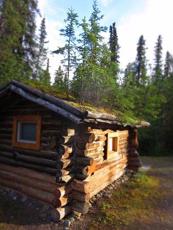 carlo creek lodge bewertungen fotos preisvergleich alaska