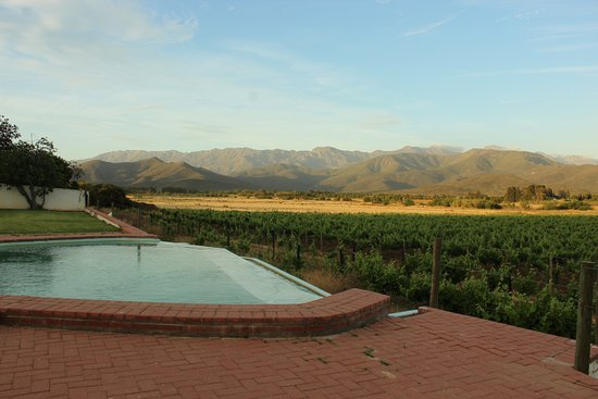Robertson, Sør-Afrika: Infinity pool overlooking mountains and vineyard