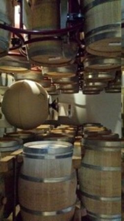 Pietraia, Italy: We learned the importance of clean, high quality barrels.