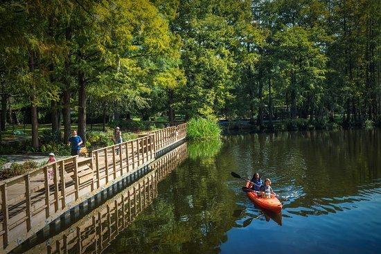 Greenfield Lake Park Picture of Wilmington North Carolina Coast