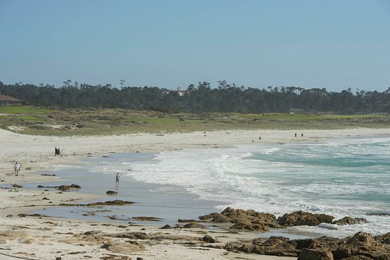 Pacific Grove, CA: Asilomar Beach