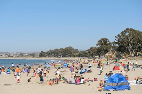 Monterey, CA: Del Monte Beeach