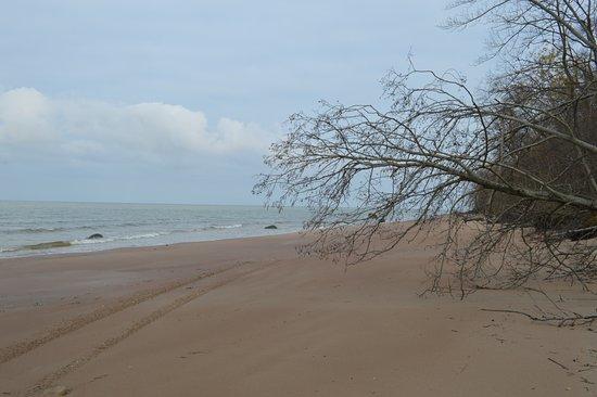 Kohtla, Estonia: Beach walk