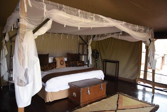 Camp Shonga Image