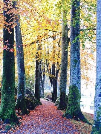 Ravnedalen Naturpark: photo0.jpg