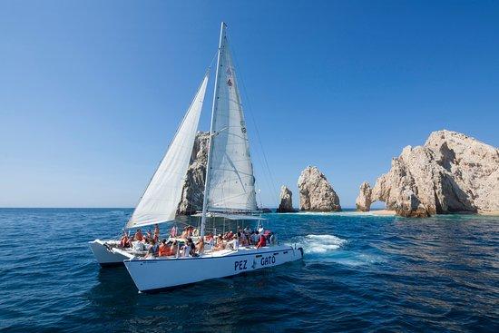 Pez Gato Cabo Sailing Catamarans