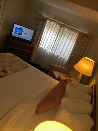 Hawthorn Suites by Wyndham Akron/ Fairlawn : Queen Bed Single Suite