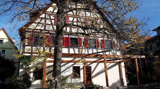 Muensingen, Almanya: Taverne Olivenbaum