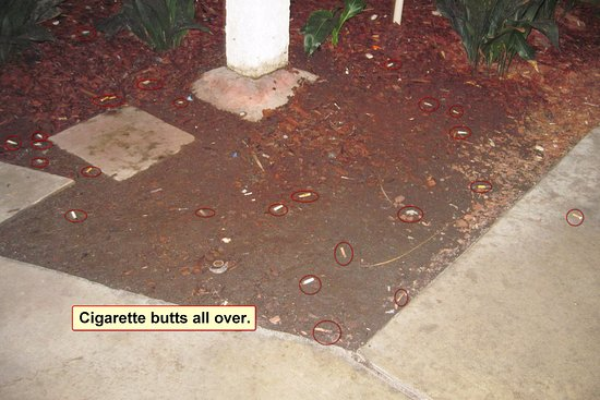 Motel 6 Buena Park Knotts Berry Farm Disneyland: cigarette butts along walkway to room