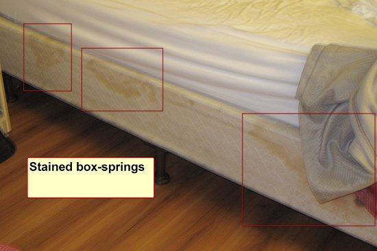 Motel 6 Buena Park Knotts Berry Farm Disneyland: Old, liquid stained box-springs