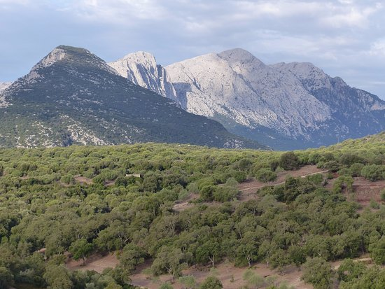 Foto de Agriturismo Canales