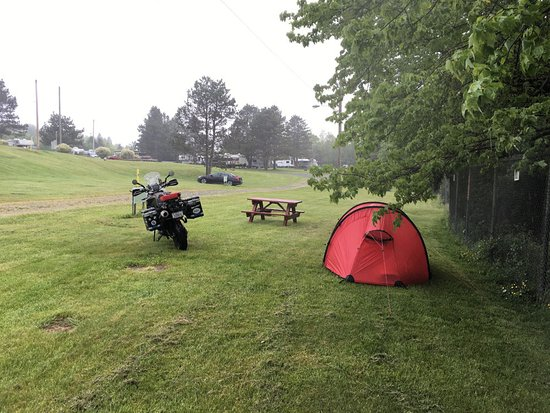 Shubie Campground: Very open campground and soggy ground when wet
