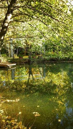 Fuencaliente, España: Lago