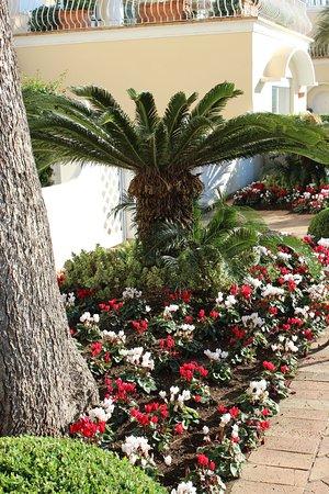 Grand Hotel Quisisana Picture