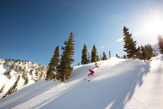 Snowbird Ski and Summer Resort. Photo by DanCampbell/VisitUtah