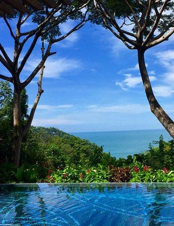 Makanda by the Sea: photo3.jpg