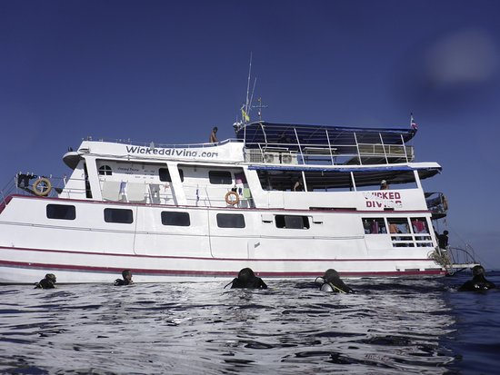 Wicked Diving Khao Lak - Day Tours Image