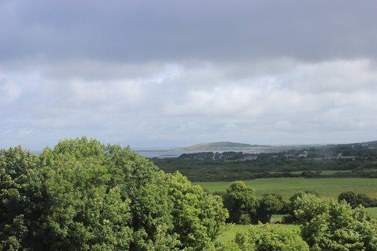 Newtown Castle : a vista