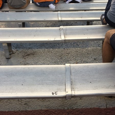Williams-Brice Stadium : Seats bent so they dont even line up aren't level and hadn't been cleaned since last rain.