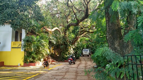 Anjuna, Indien: More views of the Property