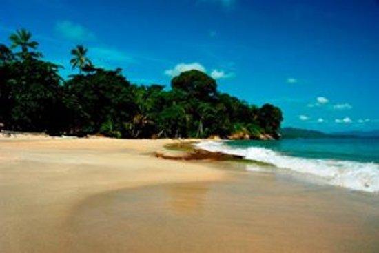 Punta Uva 이미지
