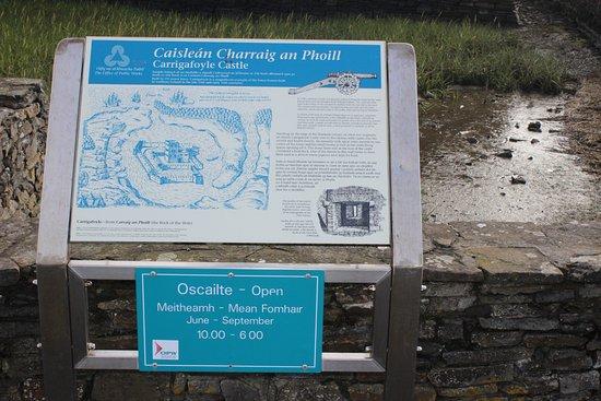 Ballylongford, أيرلندا: Informação sobre o castelo