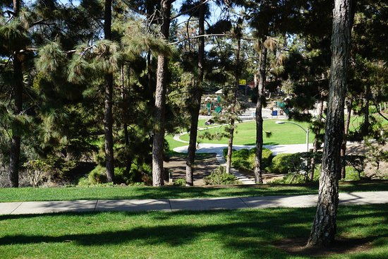 Dana Point, CA: View of the park