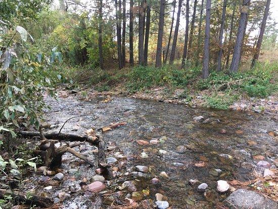 Ruby's Inn : Creek behind motel