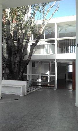La Terraza Del 1 Nivel Con El Arbol Y Vista Hacia El Estar