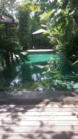 Luwak Ubud Villas: IMG-20161029-WA0009_large.jpg