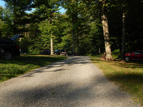 Cherry Springs State Park : Campground