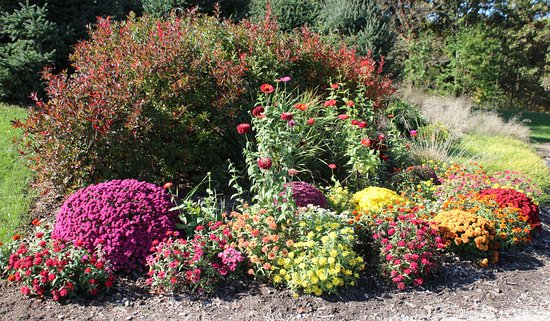 Taltree Arboretum and Gardens : A Fall planting.