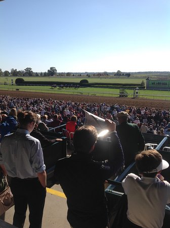 Country Inn & Suites By Carlson, Georgetown: A beautiful day at Keeneland Racetrack