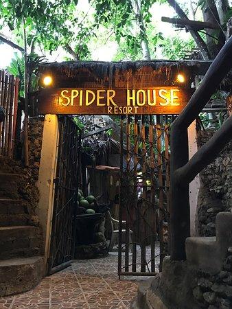 Spider House Resort: photo0.jpg