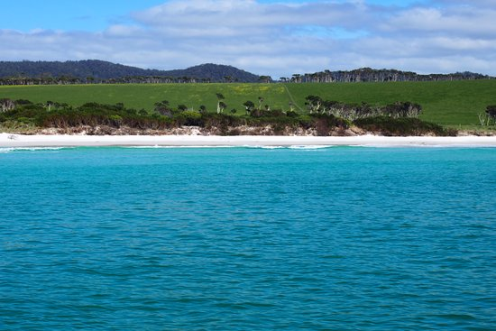 Binalong Bay, Australia: Glorious coastline, Bay of Fires, taken from EcoTours boat